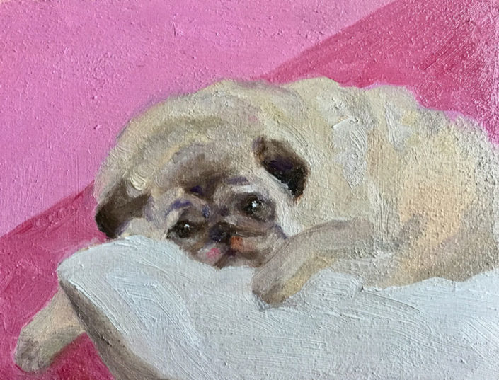 Billie Sue Pug Portrait by Caroline Dahlmanns